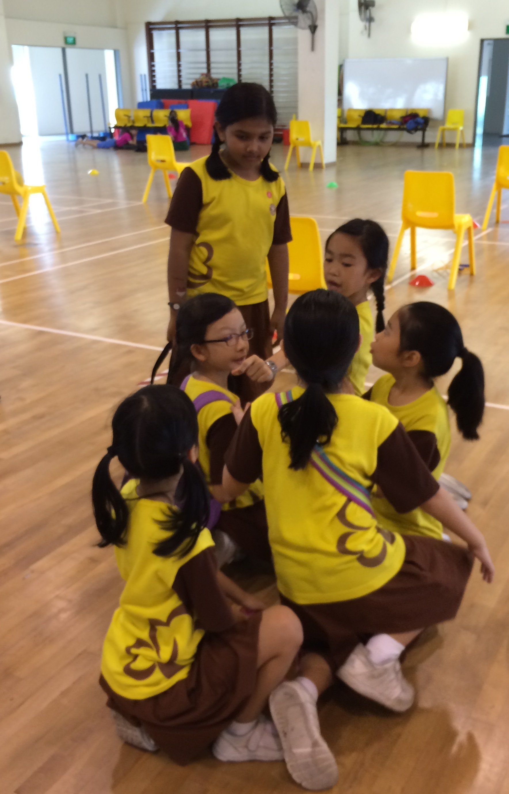 Brownies participation in West Division Day 2016